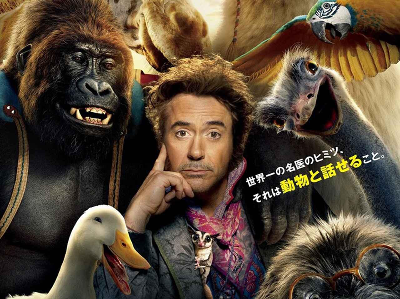 2019年の日本公開映画