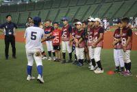 競技人口の減少に強い危機感 少年野球で進む改革