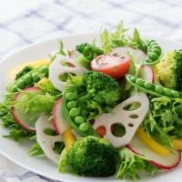 医学的、栄養学的見地からみてベジタリアンの食事はどうなのか?