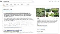 Microsoft、検索サービス「Bing」にAI機能 Redditとの提携も