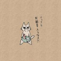 「さっさとお風呂入りなよ!!」 強く叱ってくれるツンツンな猫「しかるねこ」のTwitterアカウントがダメ人間に有り難い