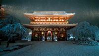 4年ぶり大雪で東京が雪景色 夜の浅草寺や朝霧に包まれた多摩川河川敷など、SNSで話題の風景写真