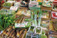 下処理ゼロで栄養面も〇!「春の山菜」はなぜ体にいいのか?