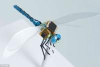 おちおちクルクルできなくなる。遠隔操作によってスパイする半昆虫半機械の遺伝子改変サイボーグトンボが公開される