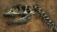 隕石の衝突があと30秒ずれていたら、恐竜は今もなお生きていたという衝撃の仮説