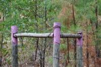 アメリカで上部が紫色の柵を見かけたら要注意。実はこんな法的意味があった。