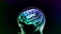 脳死の人をよみがえらせるバイオテクノロジー企業「バイオクオーク」の実際(アメリカ)