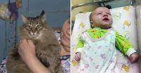 地下に捨てられたていた赤ちゃんをあたため続け命を救った猫(ロシア)