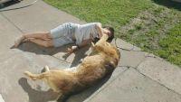 8か月の間、ずっと会えると信じてた。忘れることなんてできなかった。少年と犬の奇跡の再会物語(アルゼンチン)