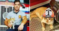 新しい隊員を紹介する。猫だ!消防隊員たちを骨抜きにした元野良猫、フレイムの物語(アメリカ)