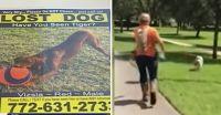 愛犬を探すため、1か月で67万円もかけて大捜索をしているアメリカの家族。業者を雇って足取りを追跡、だがいまだ見つからず