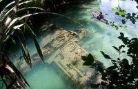 パラオ諸島の海底で零式水上偵察機E13Aと思われる機体が発見される(ミクロネシア)
