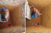 これぞ穴場の猫力!穴に落ちた猫を助けようとしたところ予想外の展開が!!