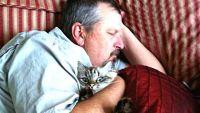 「猫?絶対にキライです!」って言ってたはずの、ツンデレたちのビフォーアフター