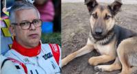 優勝よりも大切なこと。コース上に飛び出してきた犬の命を守るため3度目の優勝をあきらめたレーサー