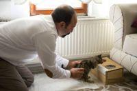 「ボクが君の足の代わりになるよ」生後2か月で2本の前足を失った猫を保護した男性と子猫の愛情物語(トルコ)