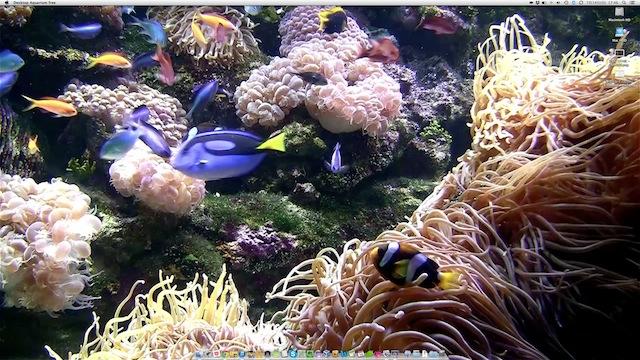 Macのデスクトップが涼しげな水族館になる無料アプリ『Desktop Aquarium free』