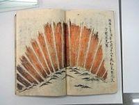 <オーロラ>江戸時代に史上最大の磁気嵐 当時の日記分析