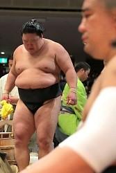 <大相撲秋場所>豪栄道連日の不覚、館内ため息