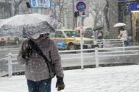 <天気>東京地方に大雪警報