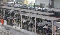<大雪>転倒、都内で16人けが スリップに伴う交通事故も