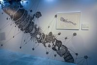<展覧会>「免疫」と「アート」の奇妙な組み合わせ