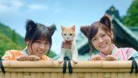 """乃木坂46、猫耳でキュートに「乃木夏ダンス」 """"にゃらん""""とCM共演"""
