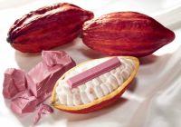 世界初! 天然のピンク色「ルビーチョコレート」使用のキットカット発売