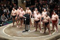 相撲協会は伝統に「あぐら」をかいている
