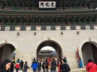 中国人観光客が急減の韓国、回復していた日本人観光客数も減少=韓国ネット「静かでいい」「日中に頼って生きるのはよくない」