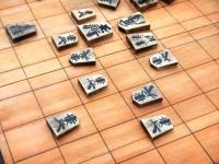 14歳の天才プロ棋士・藤井聡太四段を生んだ日本に、韓国からうらやむ声=「韓国も伝統文化にプライドを持とう」「先進国というものは…」