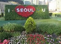 韓国の中国専門旅行会社、半数以上が営業停止状態に―韓国メディア