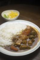カレーを一緒に食べた韓国人と日本人、お互いビックリ!=韓国ネットでは「日本式も試してみよう」の声も