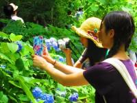 日本女性の間で出前の岡持ち風バッグが人気?韓国人が誤解した訳―韓国ネット