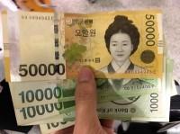 <コラム>韓国経済界は大混乱、文大統領の「独断専行」は吉と出るか凶と出るか