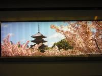 日本では聞き慣れない品が実は大人気!韓国人が薦める「日本で絶対に買うべき土産」―韓国ネット