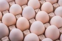 「殺虫剤卵」の次は「うじ卵」、ソウルのスーパーで発見―韓国メディア