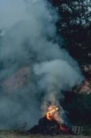 山火事で使いものにならない韓国の消防ヘリ、放水銃も貯水タンクもないまま運用=韓国ネット「公務員の能力の低さは僕らの想像を超えている」