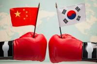 """戦術核を配備しないといつ言った?中国の""""一方的""""な発表に韓国が反発=「中国にもてあそばれている」「戦術核の配備は必要」-韓国ネット"""