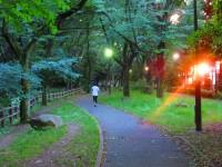 <中国人観光客が見た日本>日本はなぜこんなにきれいなのか、その理由を考えたらため息が出た