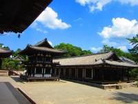 <写真特集>日本留学を始めた思い出の土地、奈良を久々に訪れて…