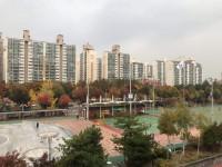 韓国の地震で耐震設計の築浅マンションに多数の亀裂、自治体は「安全です」=韓国ネット「手抜き工事だろう」「耐震設計の認定基準は?」