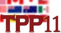 TPPは変身してCPTPPに、実現には疑問符―中国メディア