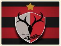 <サッカー>J1鹿島の外国人選手「日本の教育は世界一」と絶賛、中国人が反応