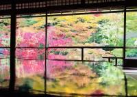 <中国人観光客が見た日本>息をのむほどの紅葉の美しさ、そして宿の主人との涙の別れ