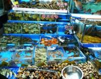 WTO、韓国による日本の水産品輸入制限措置に対し初めてルール違反の裁定―中国メディア