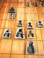 天才少年・藤井聡太6段の快進撃、韓国でも注目集める