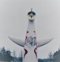 48年ぶり一般公開の「太陽の塔」、中国人が見た感想は?