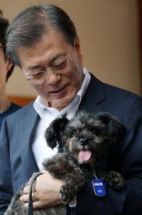 韓国に新たな「ファースト・ドッグ」、大統領が保護犬の里親に