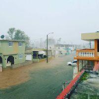 ハリケーン「マリア」、プエルトリコを直撃 ほぼ全域で停電